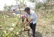 Vatieuchi1KDC kiểu mẫu, vườn mẫu của Hà Tĩnh tan hoang sau bão
